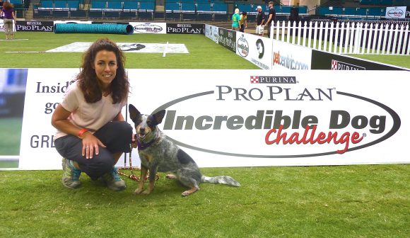 Maizey and Anne at the Purina Incredible Dog Challenge